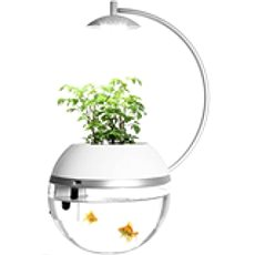 Herb & Fish Connect - Food Dispenser