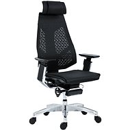 ANTARES Genidia Black/Silver - Office Chair