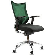 SPINERGO Office green - Office Chair