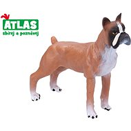 Atlas Dog Boxer