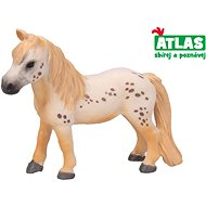 Atlas Pony