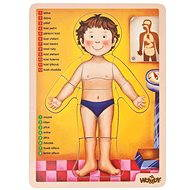 Woody Puzzle - Human body - Puzzle