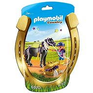 Playmobil Groomer with Star Pony 6970 - Figures
