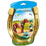 Playmobil Groomer with Butterfly Pony 6971 - Figures