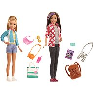 Barbie Sisters - Doll Accessory