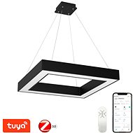 Immax NEO CANO 07073L Smart LED - Ceiling Light