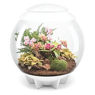 OASE biOrb AIR 60, white - Flowerpot