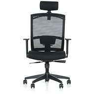 MULTISED FRIEMD BZJ 393 - Office Chair