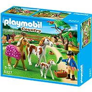 PLAYMOBIL 5227 Paddock with Horses and Pony - Building Kit