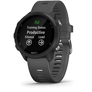 Garmin Forerunner 245 Grey - Smartwatch