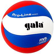 Gala Pro Line BV5591S - Volleyball