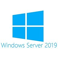 Next 1 Client for Microsoft Windows Server 2019 EN OEM USER CAL (BOX)