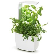 TREGREN T3 Kitchen Garden, White - Smart flower pot