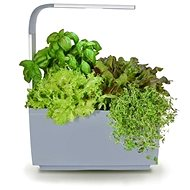 TREGREN T3 Kitchen Garden, Grey - Smart flower pot