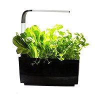 TREGREN T6 Kitchen Garden, Black - Smart flower pot