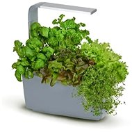 TREGREN T6 Kitchen Garden, Grey - Smart Flower Pot