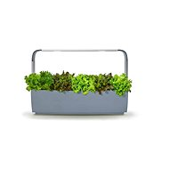 TREGREN T12 Kitchen Garden, Grey - Smart flower pot