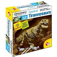 Discovery T-Rex Fossil - Creative Kit