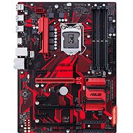 ASUS EXPEDITION B250-V7 - Motherboard