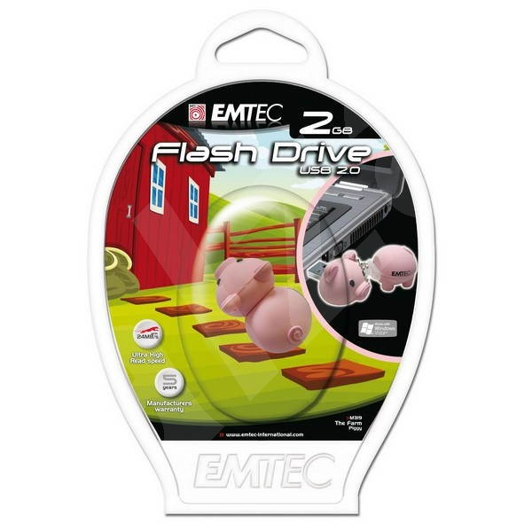 EMTEC Piggy 2GB - USB Flash Drive