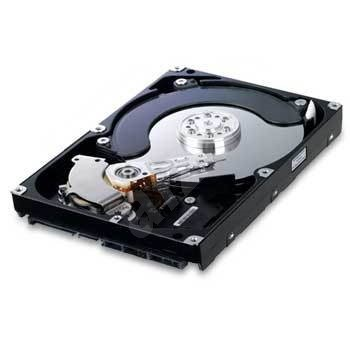 SAMSUNG SpinPoint F2 1000GB - Hard Drive