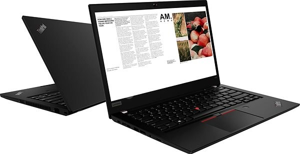 Lenovo ThinkPad T490 - Laptop